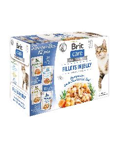 BRIT CARE CAT FG  FLAVOUR BOX POUCH (12 saszetek x 85g)